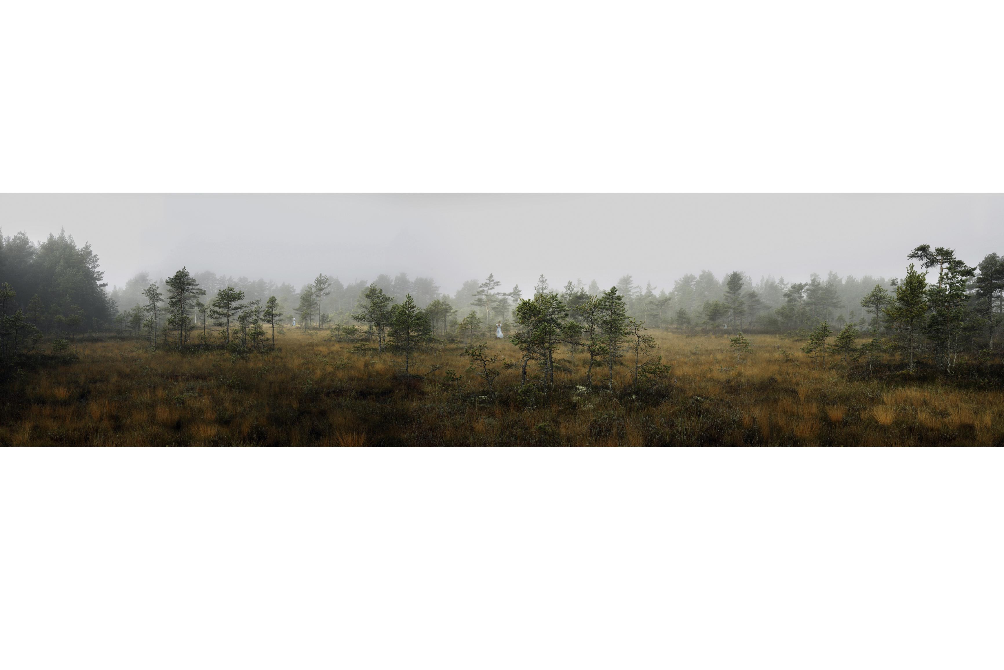 Ann Eringstam - In search of wonderland 8